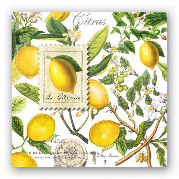 Lunch servietter - Lemon basil