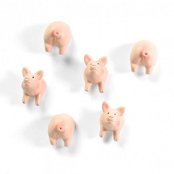 Magneter - halve grise - 6 stk